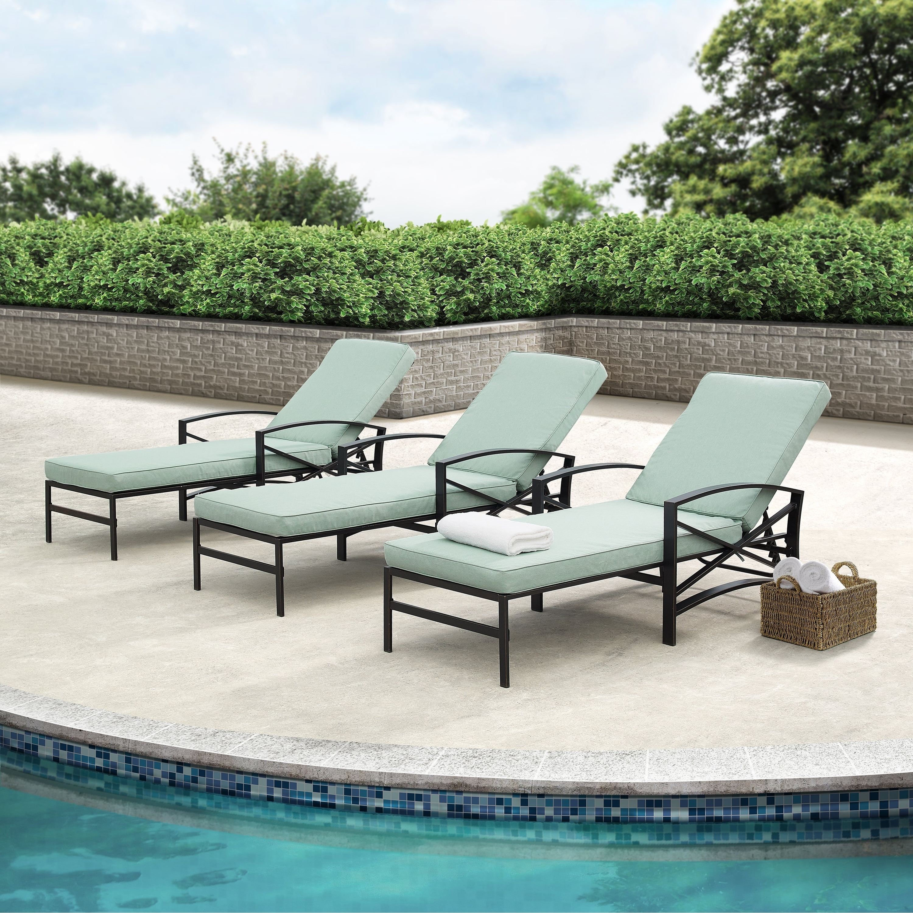 Featured Photo of Chaise Lounge Chairs in Bronze with Mist Cushions