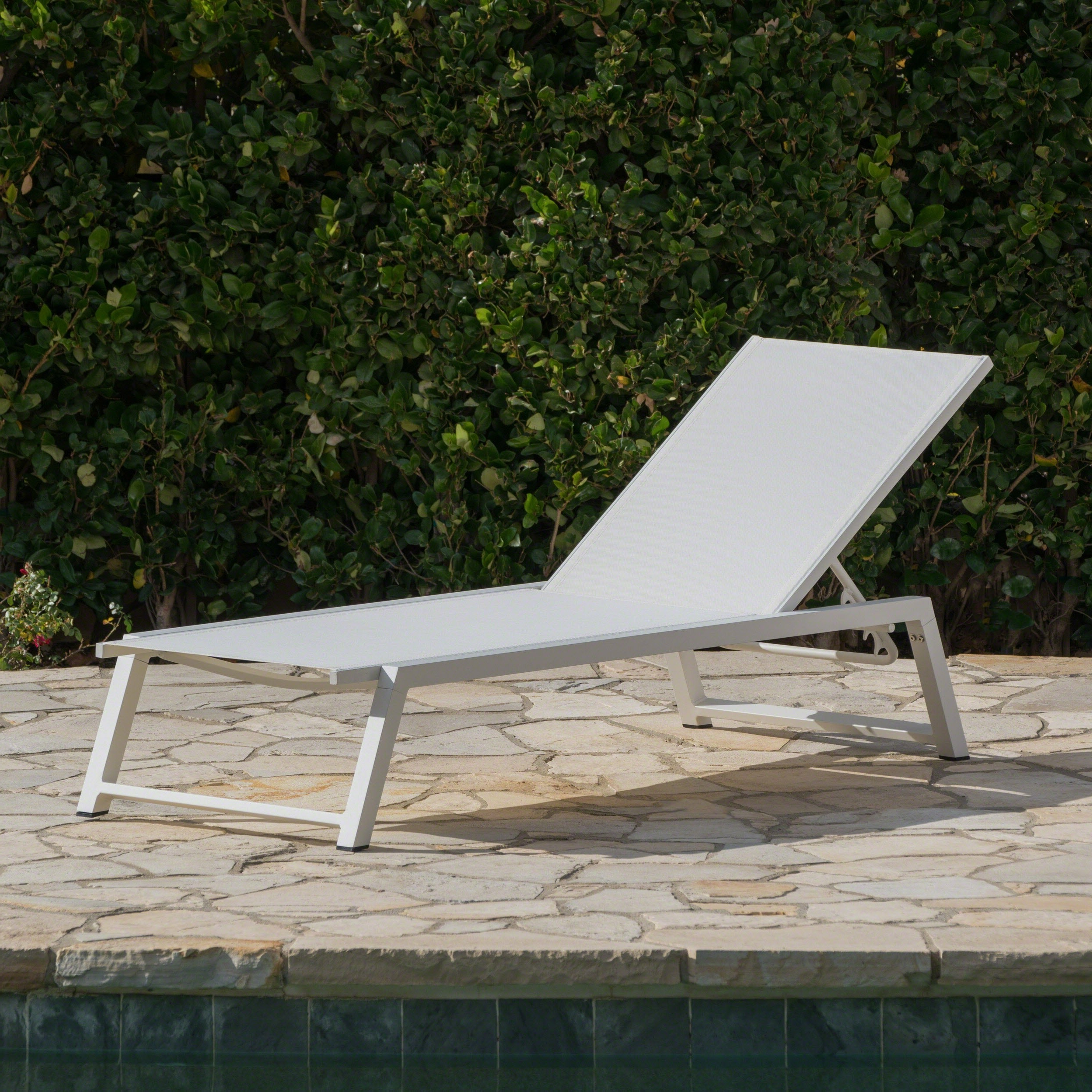 Havenside Home Newtok Mesh Reclining Patio Loungers Pertaining To Popular Myers Outdoor Aluminum Mesh Chaise Loungechristopher Knight Home (View 10 of 25)
