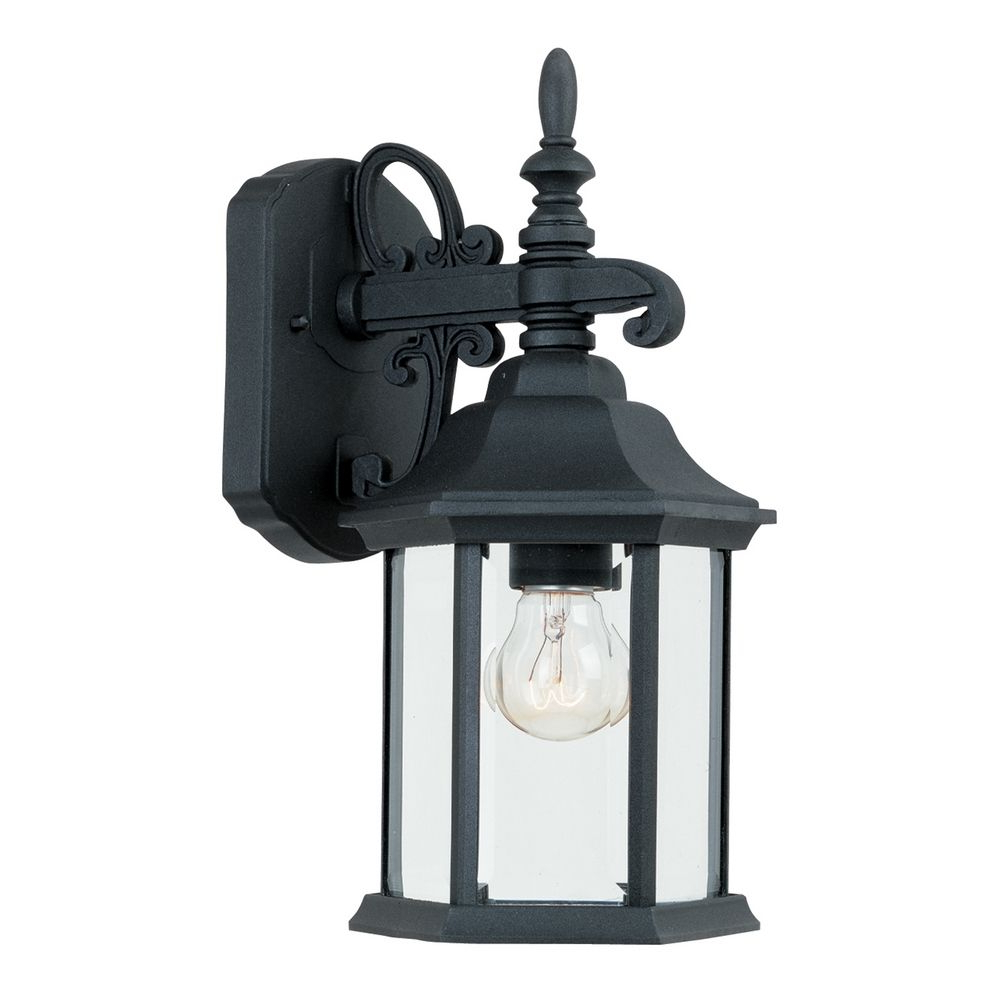 Outdoor Wall Light With Clear Glass In Black Finish (View 6 of 15)