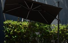 Spitler Square Cantilever Umbrellas