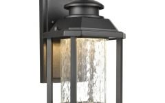 Clarence Black 10'' H Outdoor Wall Lanterns