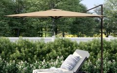 Cora Square Cantilever Umbrellas