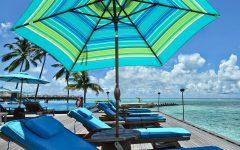 Flitwick Market Umbrellas