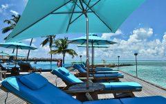 Fordbridge Rectangular Market Umbrellas