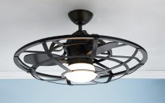 Outdoor Caged Ceiling Fans with Light