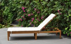 Eucalyptus Teak Finish Outdoor Chaise Loungers with Cushion