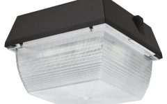 Commercial Outdoor Ceiling Lights