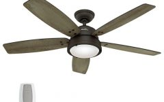 Outdoor Ceiling Fan Lights with Remote Control