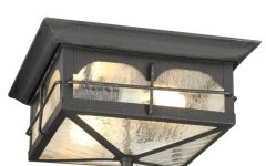 Outdoor Ceiling Flush Lights