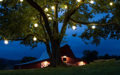 Outdoor Lanterns For Trees