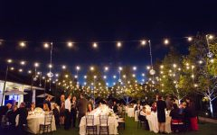 Hanging Lights for Outdoor Wedding